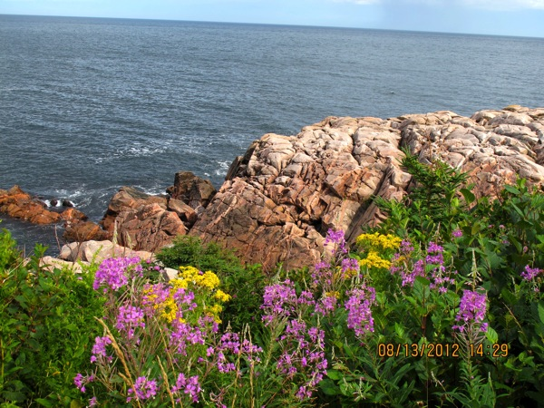 Cabot Trail IMG 0900