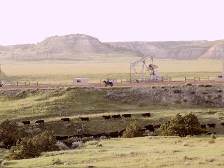 Oil field cowboy IMG_1230
